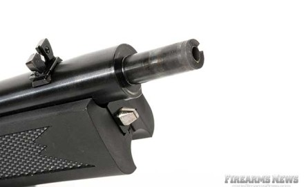 Ruger's 10/22 Takedown is a reliable semi-automatic rimfire with all the popular features that