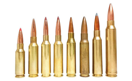 The good old .308 Win. has served well for more than 60 years, but a new generation of rifle cartridges offers much better performance past 300 yards.