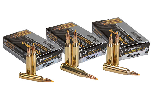 NEW: SIG SAUER's Varmint & Predator Elite Performance Ammunition