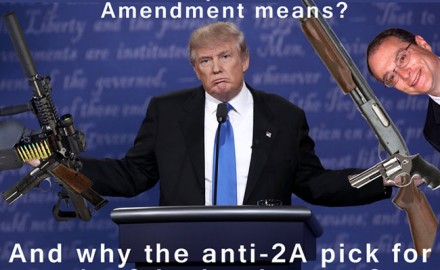 Maybe Trump's View of the Second Amendment Isn't What Gun Owners Thought It Was -- The 9th Circuit Court Is the Most Leftist, Anti-Second-Amendment Court in the United States and President Trump's New Nominee Will Keep It That Way