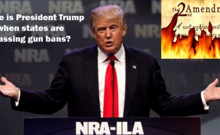 trump-nra-feature