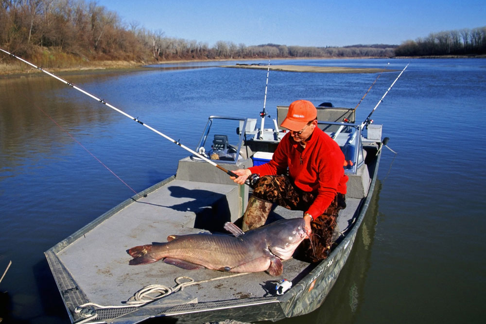 //www.gameandfishmag.com/files/10-best-tips-for-catching-catfish/10_tips_catfish_7.jpg