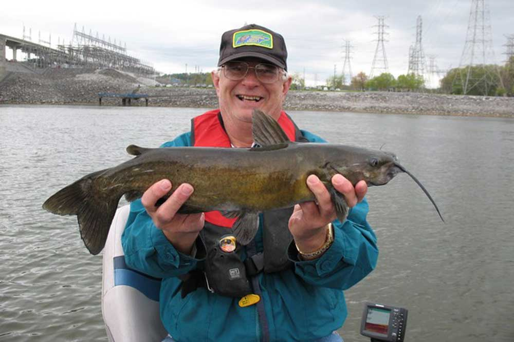 //www.gameandfishmag.com/files/10-biggest-catfish-world-records-of-all-time/channel-cat_1.jpg