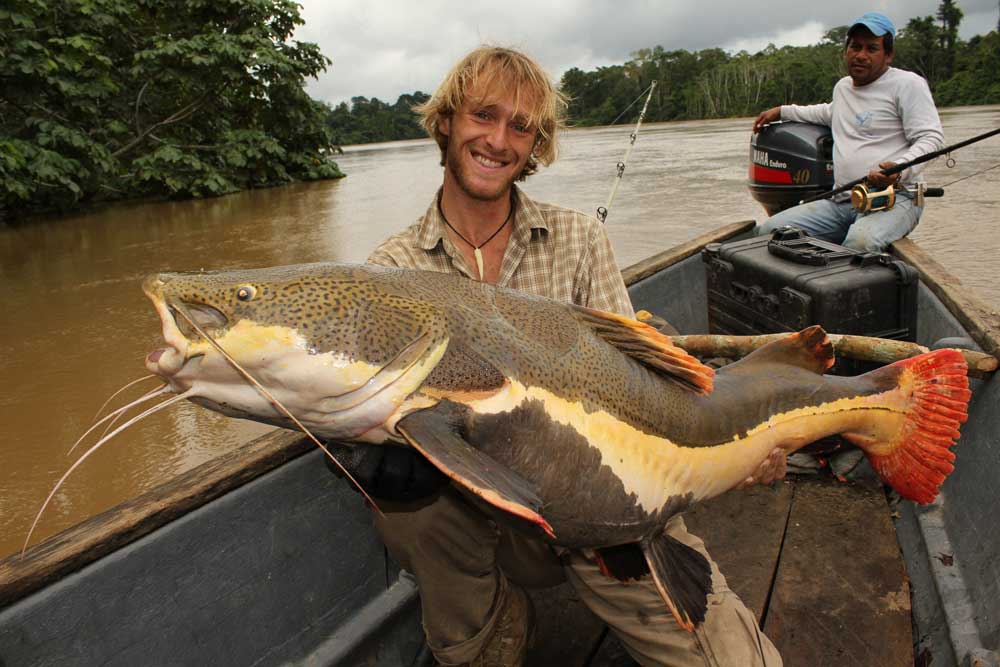 //www.gameandfishmag.com/files/10-biggest-catfish-world-records-of-all-time/redtail-catfish_1.jpg