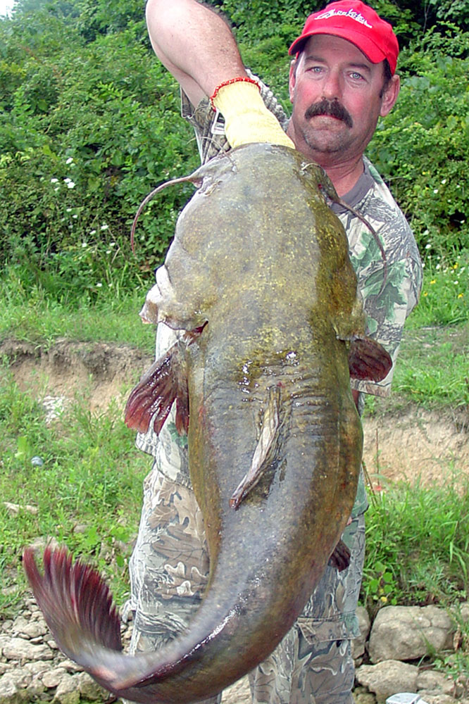 //www.gameandfishmag.com/files/12-best-states-for-catching-monster-catfish/ohio_1.jpg
