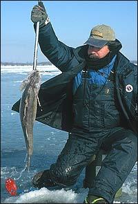 Michigan's Winter Walleye Waters