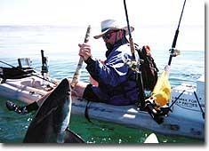ест шарк рыбалка