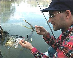 Everyone loves catching and eating crappies. You can get the main ingredient for a fish fry on these waters.