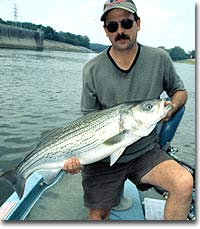 36 Great Fishing Trips in Tennessee
