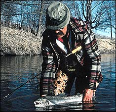 We have it really lucky here with our great fishing for steelhead on rivers flowing into Lake Michigan and Lake Superior. The following are Wisconsin's best spring steelie streams.