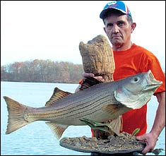 Illinois' Best Bets for Stripers