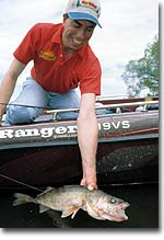 Minnesota's Best Bets for Walleyes