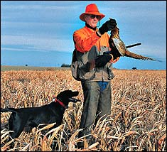 That's what Great Plains pheasant hunters are hoping for this fall -- but is that what they'll get? Read on to see what state biologists are saying.