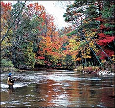 Michigan's Fall Fishing Hotspots
