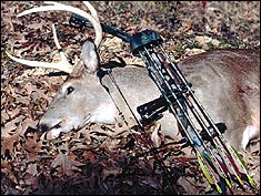 Rising harvests and bigger bucks are causing this WMA to get a serious look from archers and muzzleloader enthusiasts in Tennessee.