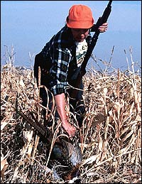 No doubt: After the opening-day blast of excitement, Sunflower State pheasant hunting becomes a different game.