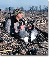 Here are private and public land options that should put you in the middle of some excellent goose hunting right now!