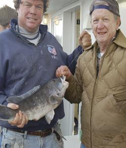 New Jersey's Inshore/Offshore Winter Wonderland