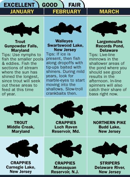 Mid-Atlantic 2007 Fishing Calendar