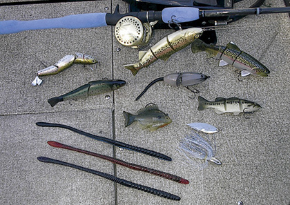 2008 southern california bass outlook for Bass lake ca fishing