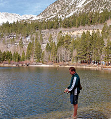 California's 2006 Trout Forecast