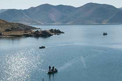 Bass fishing tips diamond valley lake for Diamond valley lake fishing