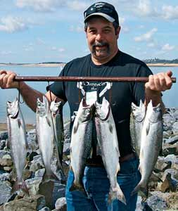 Missing your king fix without an ocean season? Check out Lake Shasta and Folsom Lake for inland chinook to 5 pounds and up!   (September 2008)