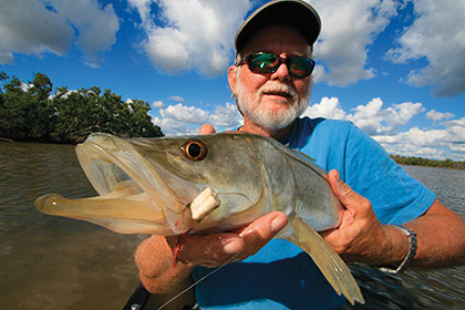 As the weather stabilizes this month in central Florida, the fishing becomes more dependable, which makes it a great time to target snook in the Indian River. (April 2010)
