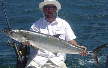 When summer arrives on Florida's First Coast, the king mackerel act like tourists! Here's how to take advantage of their move to the beaches. (August 2008)