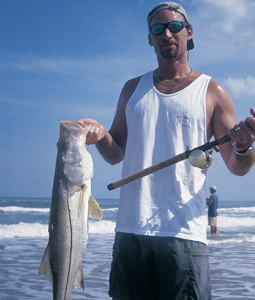 Now's the time to target linesiders along our Atlantic coast. And here are the places and patterns that can provide you with some successful fishing trips! (September 2007)
