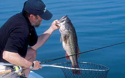2009 hotspots for peach state bass for Bass fishing in georgia