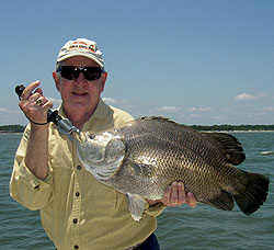 These odd-acting game fish show up along the Georgia coast this month, offering some challenging angling. Join the author as he explores sight-casting for tripletails in May. (May 2009)