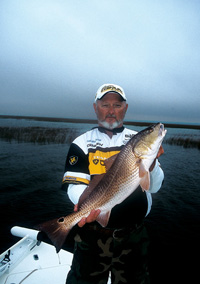 Red drum are on the Georgia coast year 'round, but not always in the same locations. Think of this as a primer on finding and catching them from spring to fall. (July 2006)