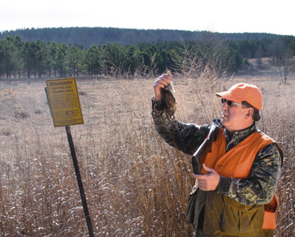 "The expansion of ""dog-training areas"" in Georgia is breathing new life into bobwhite hunting on public lands. Here's a look at what the action's like. (December 2007)"