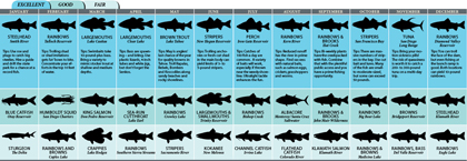 California 2011 fishing calendar for Nj saltwater fishing registry