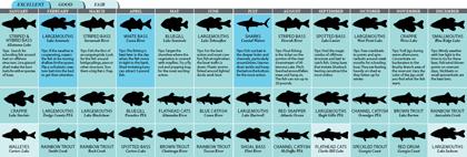 Georgia 2011 Fishing Calendar