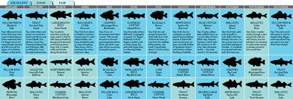 Iowa 2011 Fishing Calendar