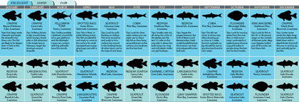 Louisiana 2011 Fishing Calendar