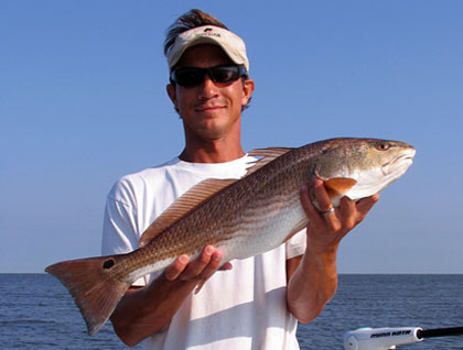 The Gulf Coast Redfish Recovery
