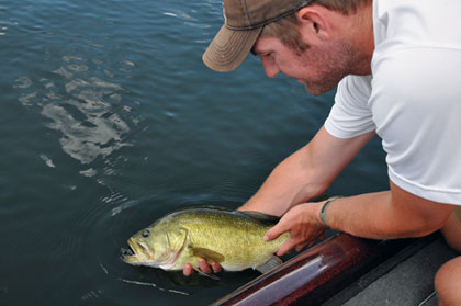 Minnesota's Best Bets For May Fishing