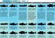 New England's 2011 Fishing Calendar