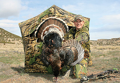 If you're willing to put in the time and effort, hunting turkeys on public land can be a very rewarding experience.