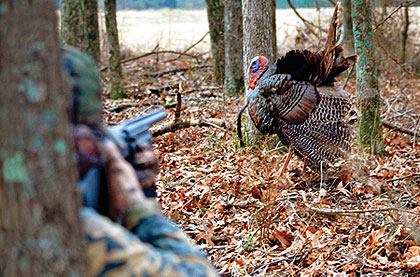 The Volunteer State has a lot of areas of public land open to turkey hunting. But that doesn't mean they're all created equal! Let's see which should stand out this year.