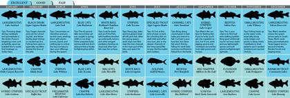 Texas 39 2011 fishing calendar for Fishing calendar texas