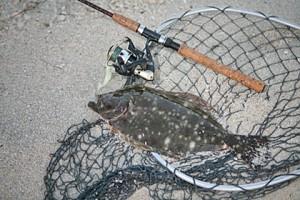 South Carolina saltwater fishing