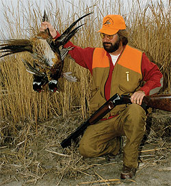 Although ringneck numbers were somewhat down through much of the Great Plains region last year, pheasant hunting remained good to excellent in many places. 2010 promises much of the same. (September 2010)