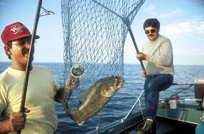 Big creek lake 39 s walleye secret for Walleye fishing in iowa