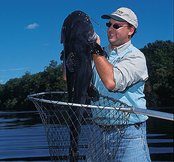 20 Things You Should Know About Iowa Catfish