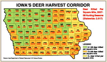 We've got the inside line on this season's whitetail action in the Hawkeye State, and on which counties should be hot -- or not. To fill your tags, and your freezer, give these areas a try. (October 2008)