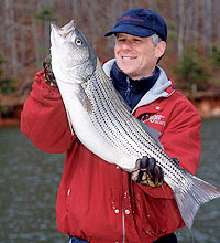 On our power-plant cooling lakes, the open-water winter fishing can be really hot. Come on along for the boat ride as we chase stripers, largemouths, catfish and a few other species. (January 2006)